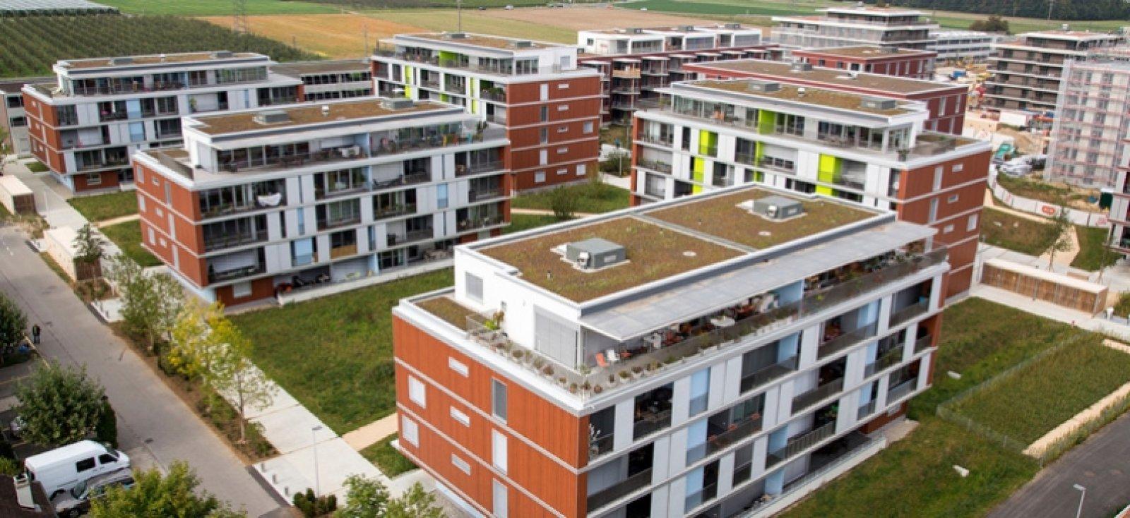 Eikenott Rezidansları, İsviçre